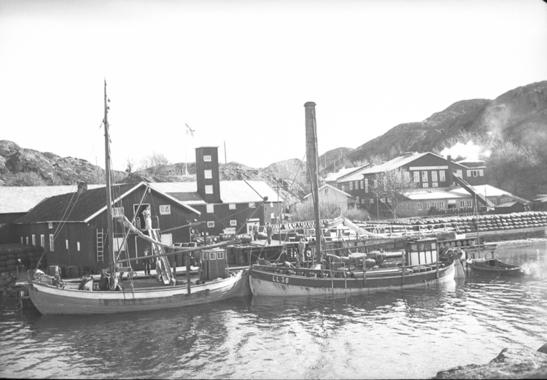 Vestkustens Olje & Guanofabrik i Oxevik år 1949