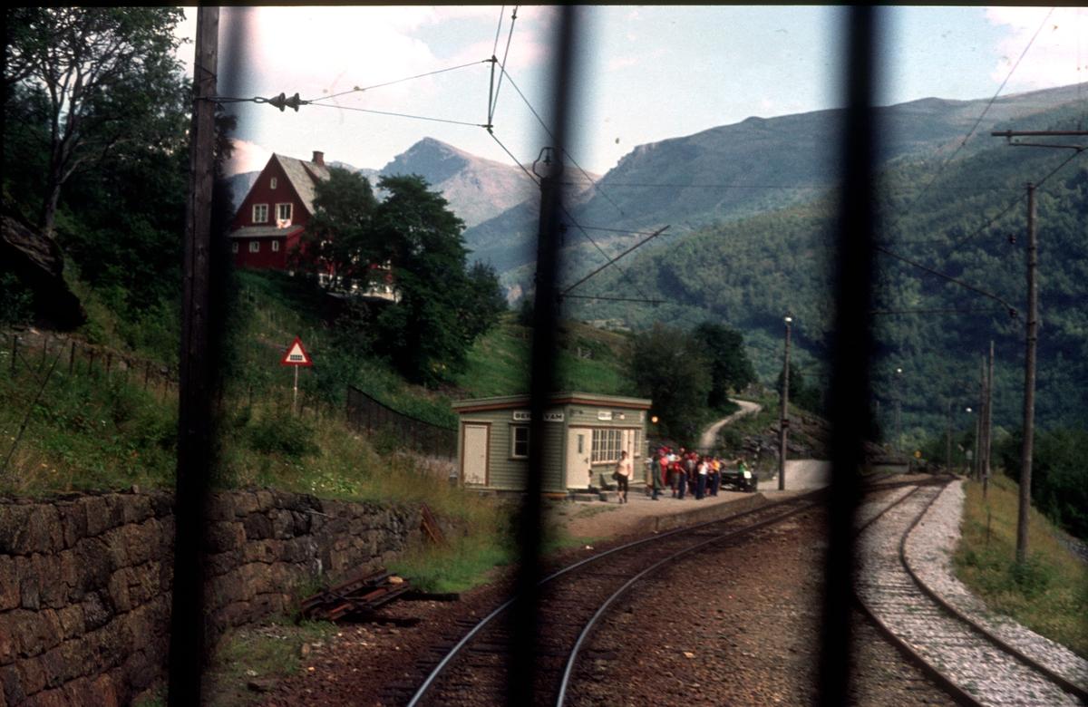 Berekvam stasjon fotografert fra elektrisk lokomotiv type El 9.