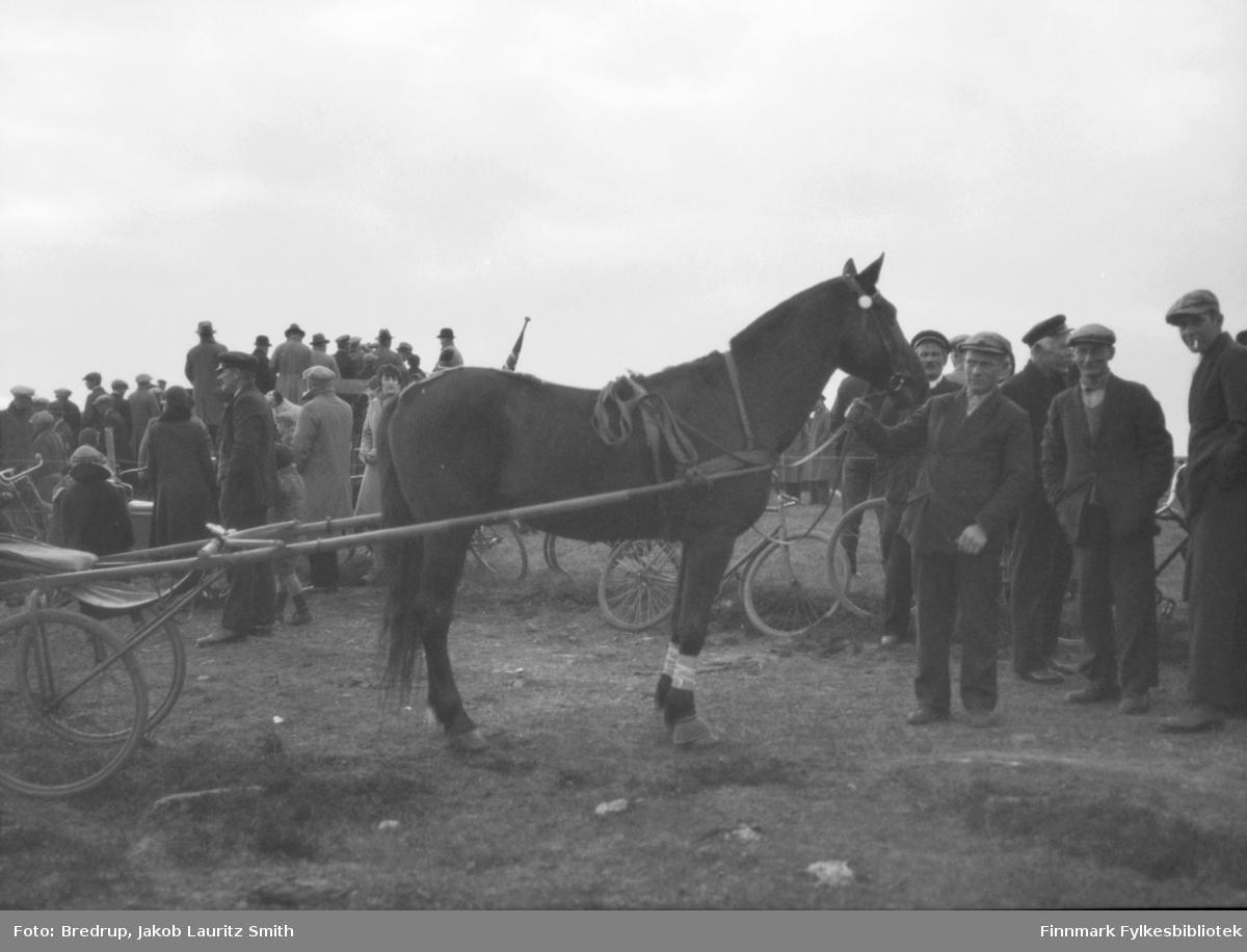 Bildet er tatt i 1933 og hesten er fullblodshesten 'Bravo II' til kjøpmann Ole Nilssen fra Vadsø.  Det er Gustav Jormonen som holder hesten.  Ellers er følgende personer gjenkjent på bildet:  Fra høyre med sigarett i munnen Konrad Leo Ratikainen, nummer to er Borgvald Sukuvara, nummer tre er Gustav Dahl og ansiktet ved mulen til hesten tilhører Karl Marki