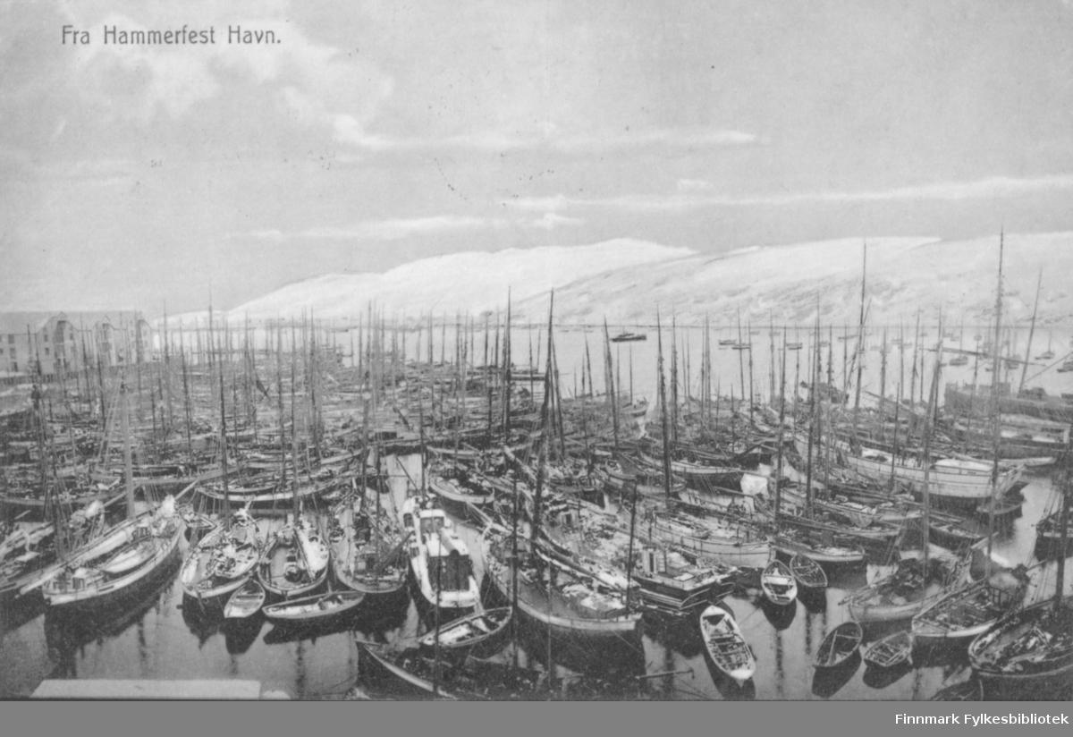 Postkort med trykt tekst 'Fra Hammerfest Havn' - fullt av fiskefartøyer på havna