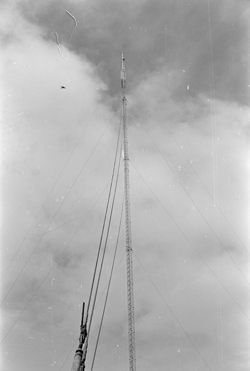 Nordhue. Radio/TV-mast.