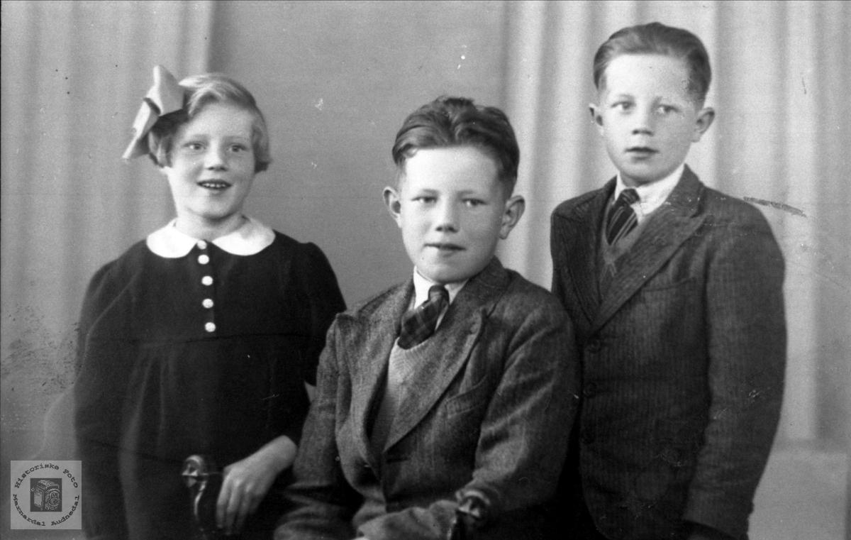 Gruppe Anna, Oddvar, Petter Kåre Flystveit