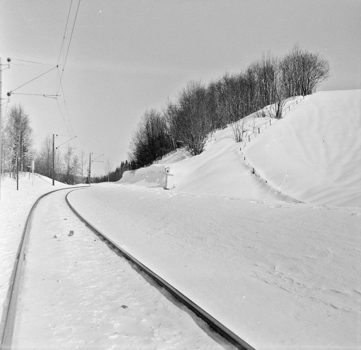 Ved innkjør til Bingsfoss stasjon.