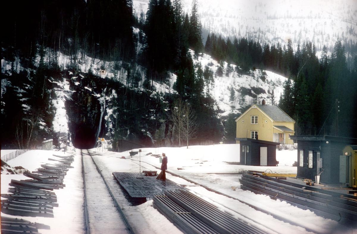 """Laksfors stasjon. Daghurtigtoget til Bodø, Ht 451, kjører inn på stasjonen, og togekspeditøren viser signal """"Passer"""" med grønt flagg på plattformen."""