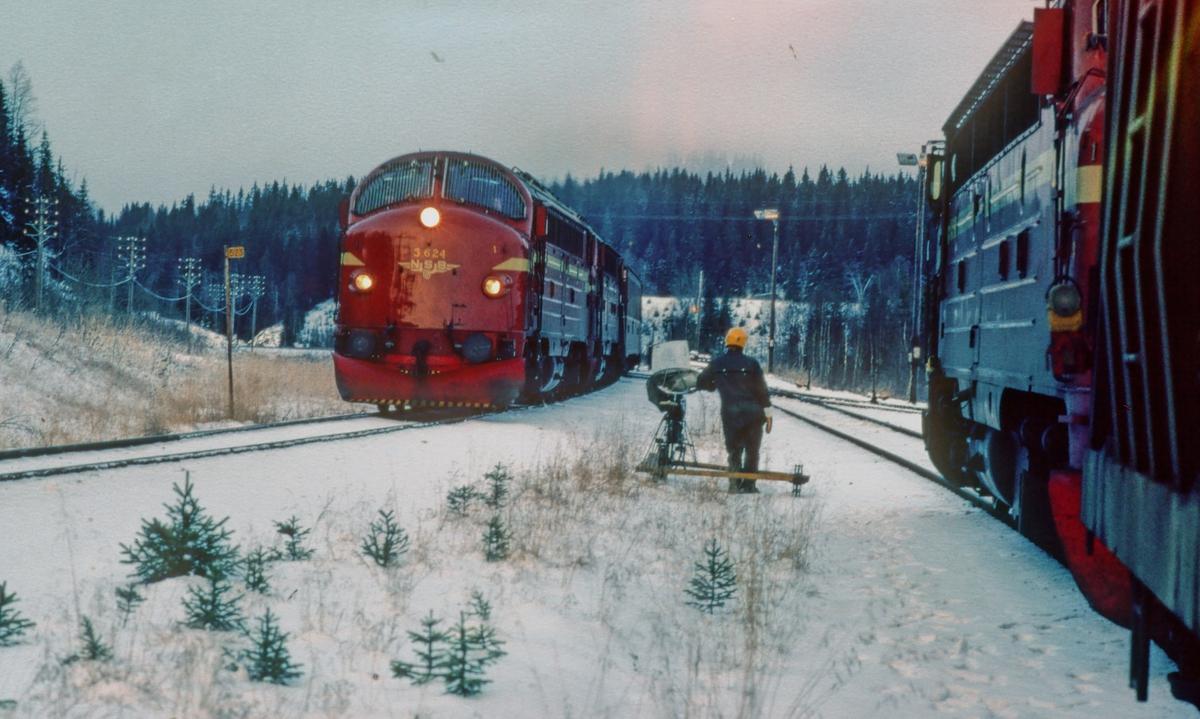 Nattoget til Bodø passerer Storforshei stasjon, og krysser med lastet malmtog fra Rana Gruber. Linjevisitør med dressin.