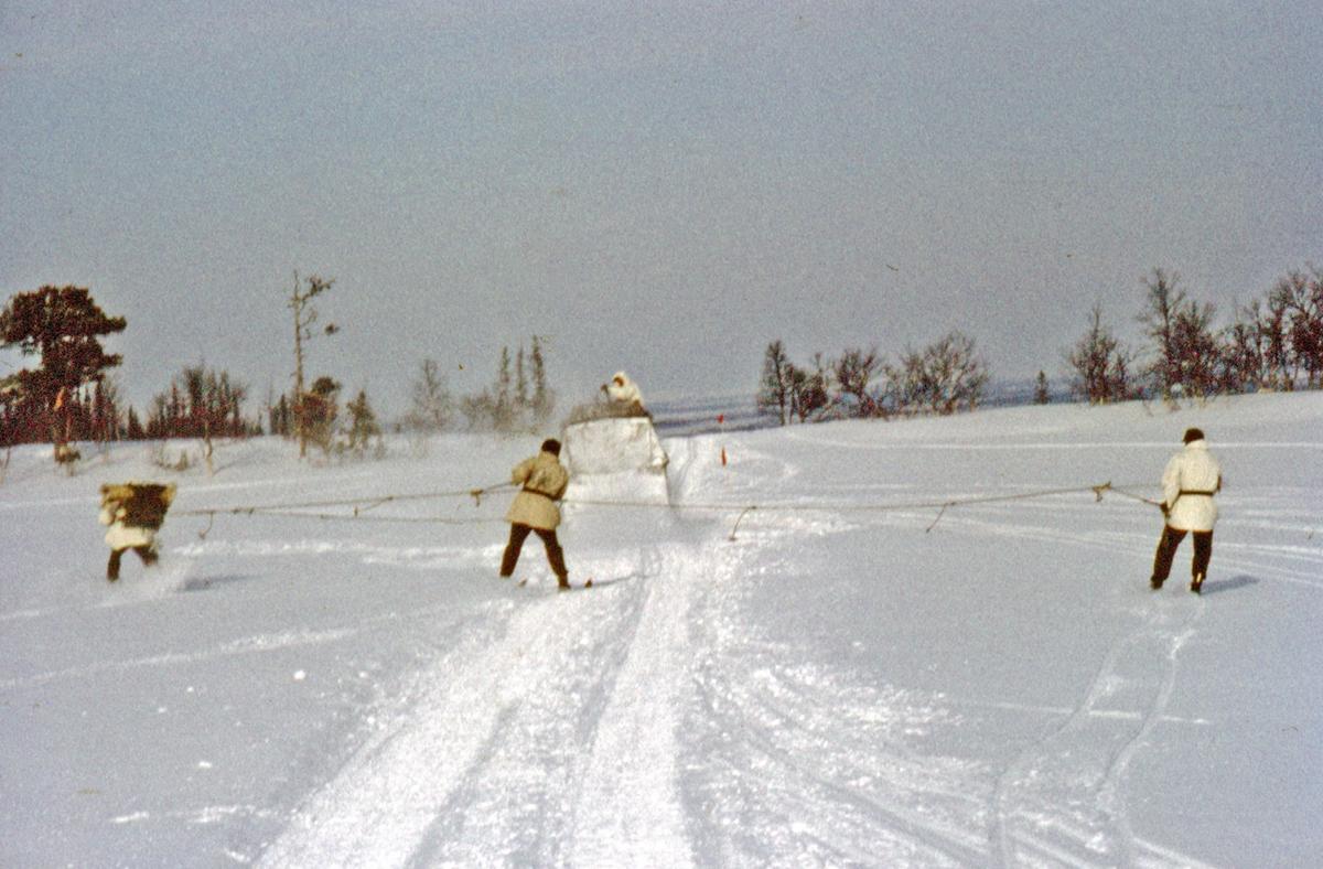 Vinterövning vid Rundhögen intill Storlien. I 21 Västernorrlands Regemente.