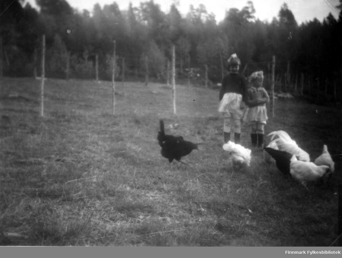 Namdalen, Sør-Varanger. Fotografi av Edit Stenbakk og Grethe Stenbakk ute på en eng. Foran dem er det to svarte og fire hvite høner. Det står flere stolper på engen. I bakgrunnen er det skog. Jentene er på besøk i Namdalen hos deres søster Agnes Randa. De er begge kledt i skjørt, genser og støvler. På hodet har de lyse hårsløyfer. Bildet er tatt på gården til Abiel Randa.