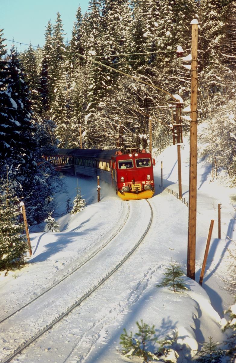 NSB ekspresstog 62 Bergen - Oslo sør for Movatn stasjon en vinterdag. Lokomotivet er El 16 2202 malt i nye farger i henhold til NSBs nye designprogram.
