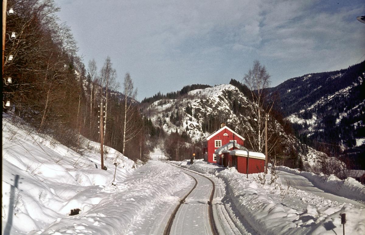 Tog til Rødberg kjører inn til Gvammen stasjon, Numedalsbanen. Numedal.