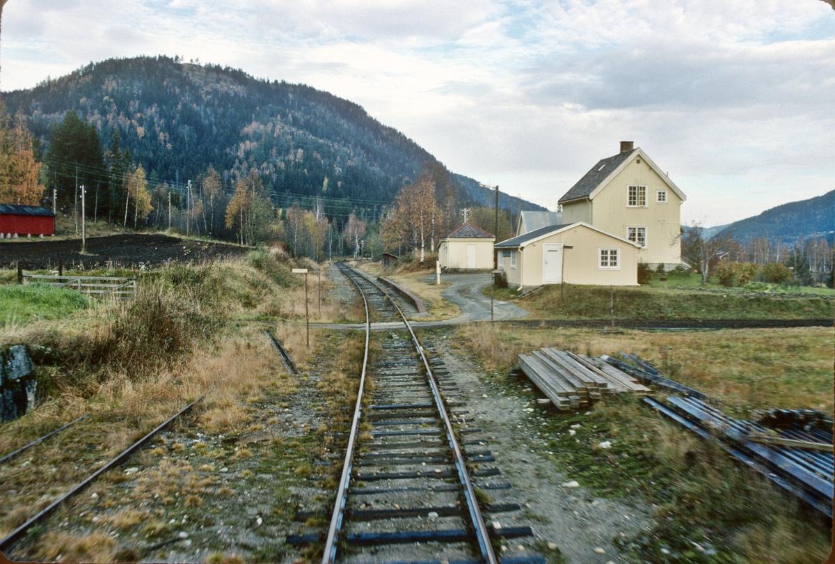 Eidstryken holdeplass, tidligere stoppested, Numedalsbanen. Numedal. Bildet er tatt fra førerrommet i tog til Rødberg.