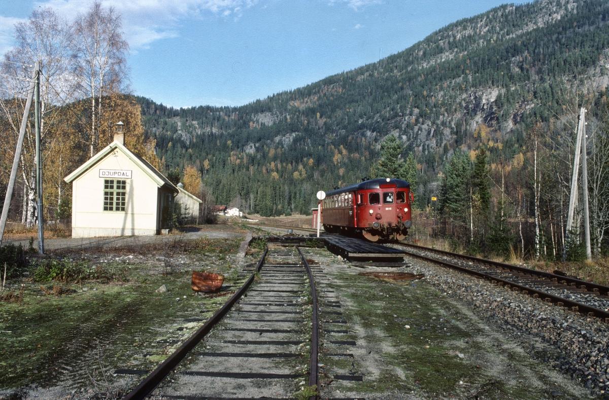 Persontog Rødberg - Kongsberg stopper på Djupdal holdeplass, tidligere stoppested og lasteplass. Numedal.