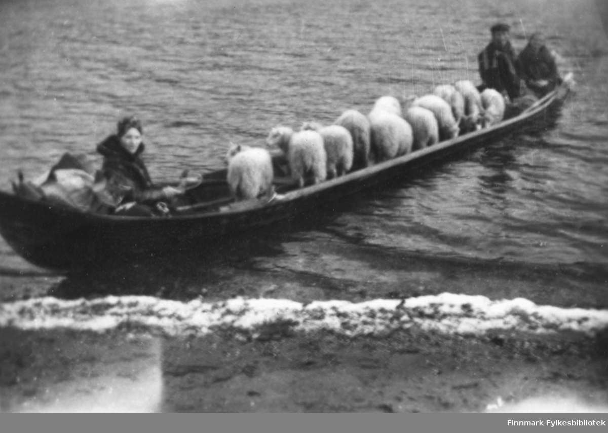 Sauefrakting i elvebåt på Altaelva. Kristian og Magna Wisløff er med. Magna sittende til venstre? Kristian Wisløff en av de til høyre? Ca.1930-40 tallet.