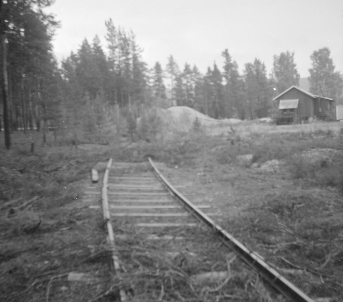 Sidespor til grustaket ved Kløftefoss stasjon på Krøderbanen.