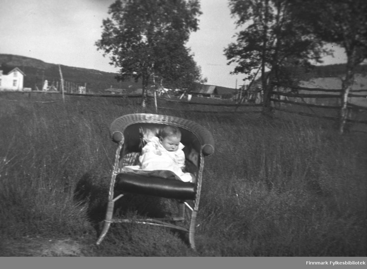 Spedbarn fotografert i en kurvstol på en frodig eng. Dette kan være Aino Mikkola på hennes dåpsdag. Bildet er tatt på Mikkel Mikkolas gamle eiendom Nordmannseng, i Neiden, nedenfor kirka. Huset i bakgrunnen til venstre tilhørte lærer Haaheim