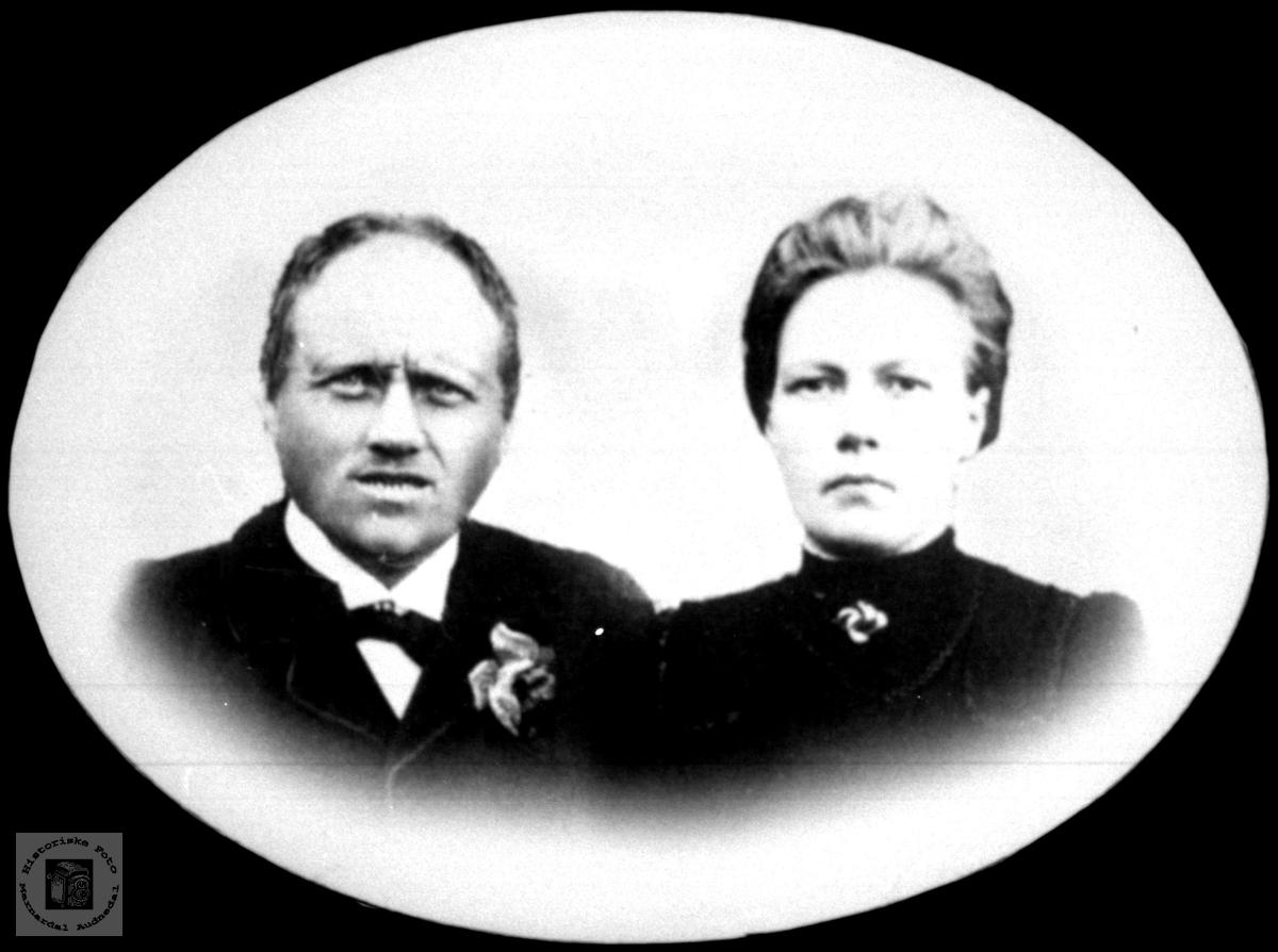 Ekteparet Torje Aagedal og Anna Aagedal (f.Botnan)