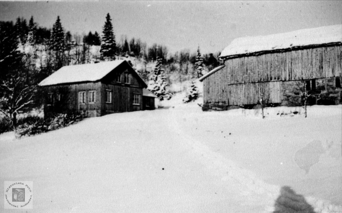 Gardsbruket Krona på Tisland.