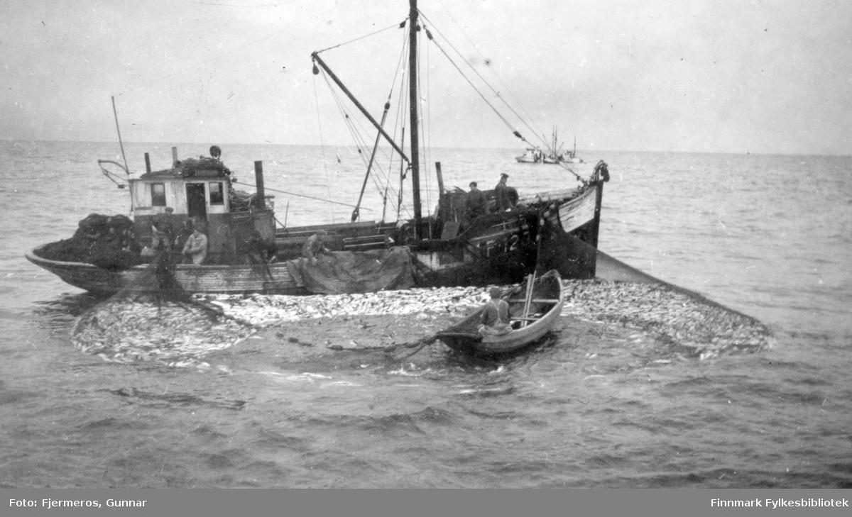En fiskeskøyte ligger med seinota ute. En lettbåt med en person ombord ligger litt bortenfor skøytaog flere personer jobber på dekk med å hale nota. Personer og båt er ukjent, men bildet er tatt øst for Nordkapp våren 1948.