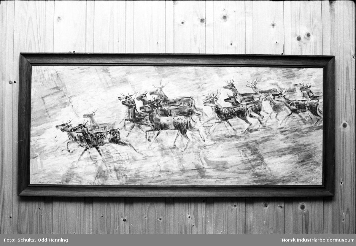 Maleri av Håkon Enger som henger i spisesalen i Snekkerverkstedet. Maleriet fremstiller en reinsdyrflokk.