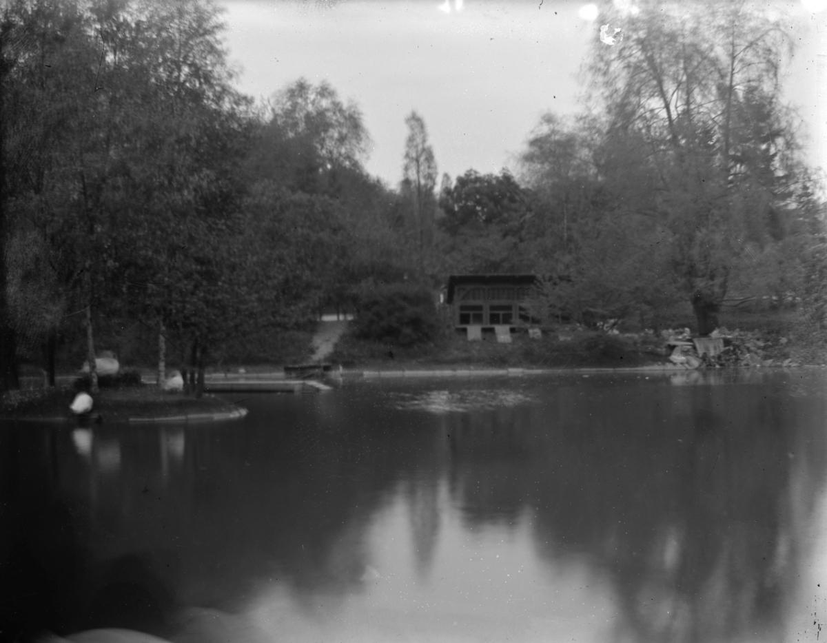 Dammen i St. Hanshaugen park