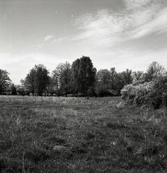 Landskapsbilder från Horsö.