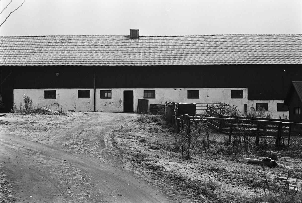 Ladugård, Näs-Edeby 1:1, Uppsala-Näs socken, Uppland 1984