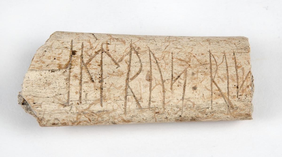 """Runben. Ristade runor på ett fragmentariskt revben av djur. Ristningen lyder """"andrus : ris... dvs """"Andreas (?) ristade..."""". Den är ristad på ena sidan med djupa och välformade runor, 12-14mm höga. Enligt rapporten skulle detta runben kunna vara från tidig medeltid (decennierna runt medeltid)."""