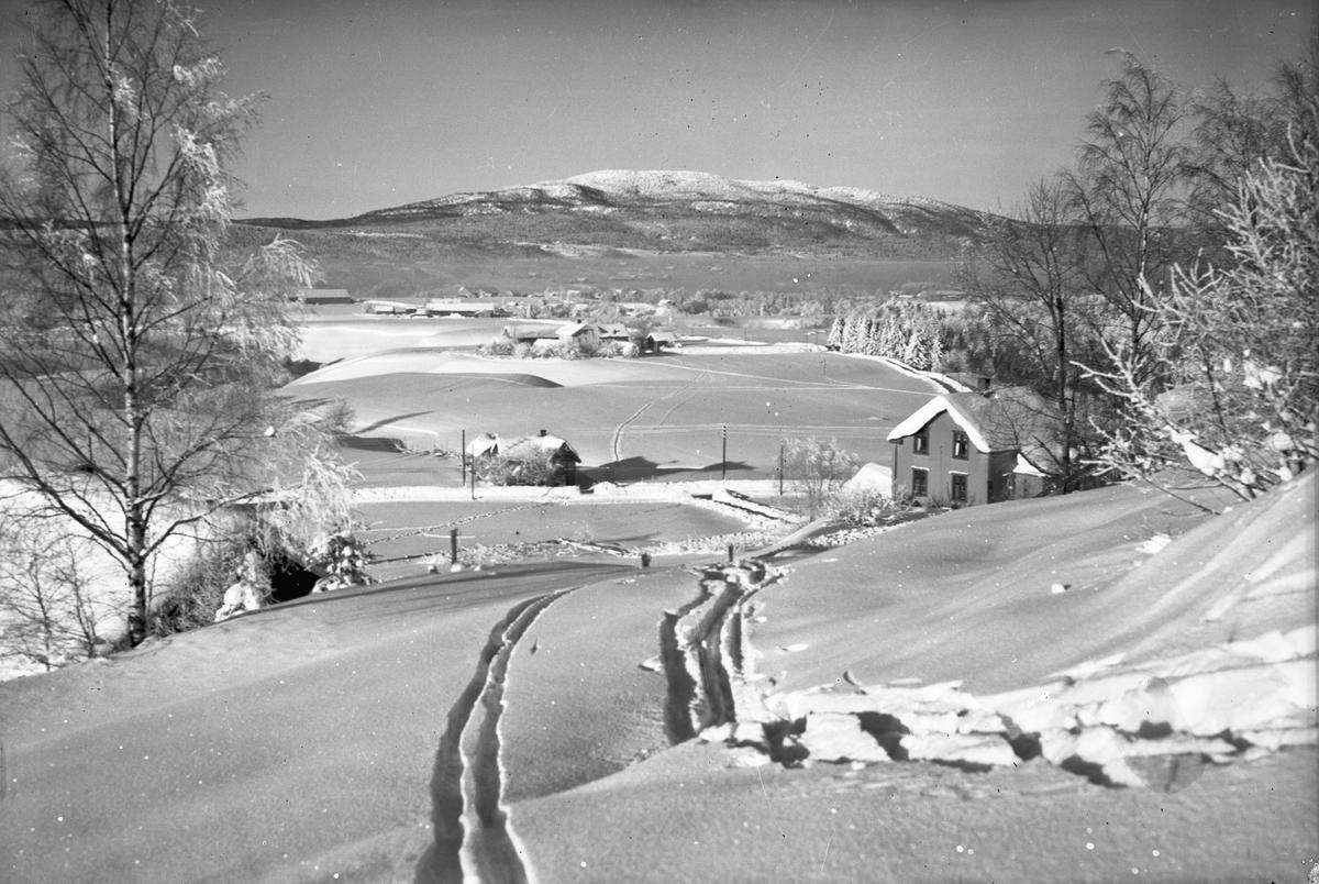 Kultur-/vinterlandskap. Utsikt nedover Isager med gårdene til Sandholt og Røkholt.