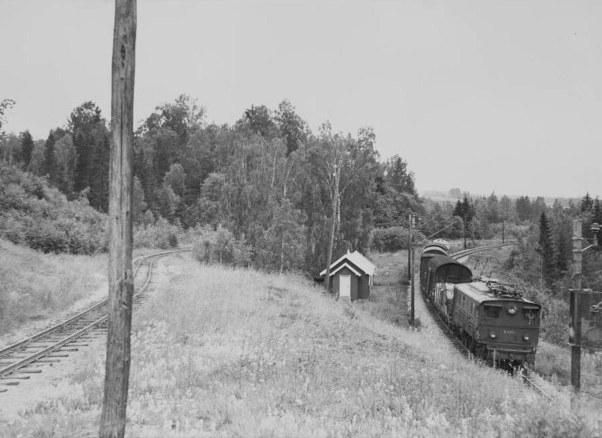 Godstog trukket av elektrisk lokomotiv type El 5 nr. 2051 på Kongsvingerbanen.