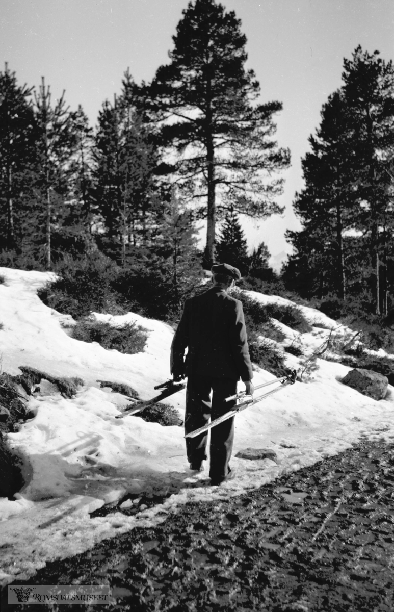 Halvor Gjenstad på tur i Moldemarka