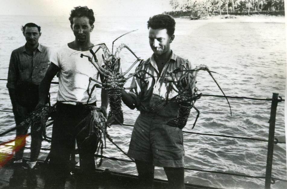 Album Ubåtjager King Haakon VII 1942-1946 Forskjellige bilder. Craw fish ved Swan Island.