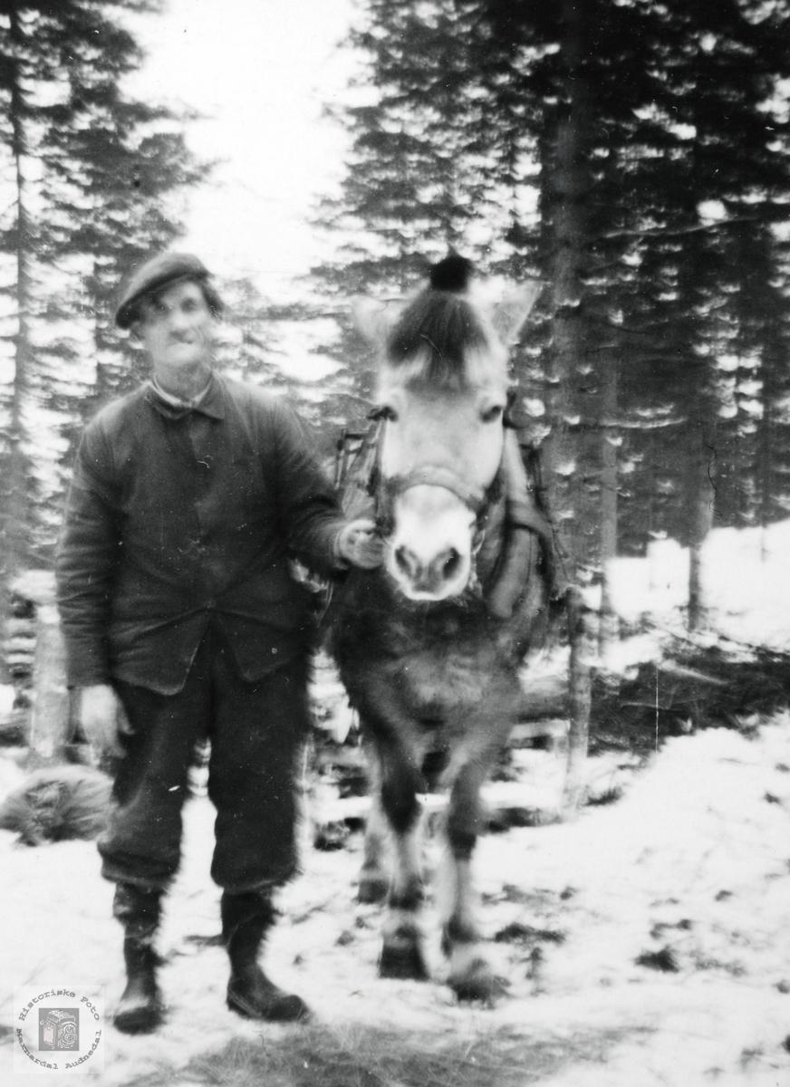 Teodor Høyland på skogsarbeid med hesten. Grindheim Audnedal.