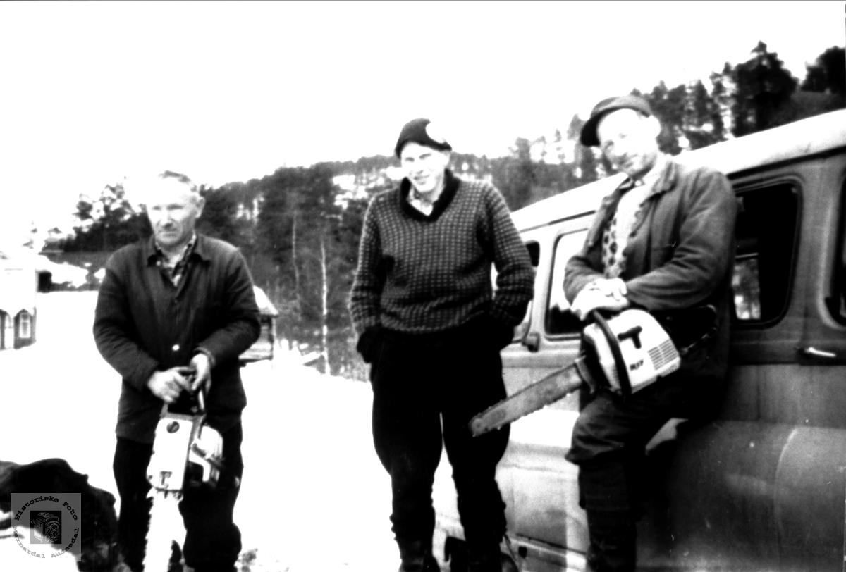 Skogsarbeidere på Stedjan, Bjelland.