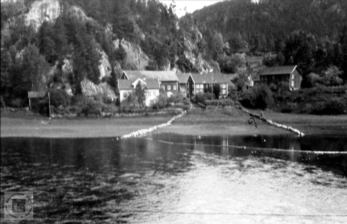 Fuglestvei i Øyslebø.