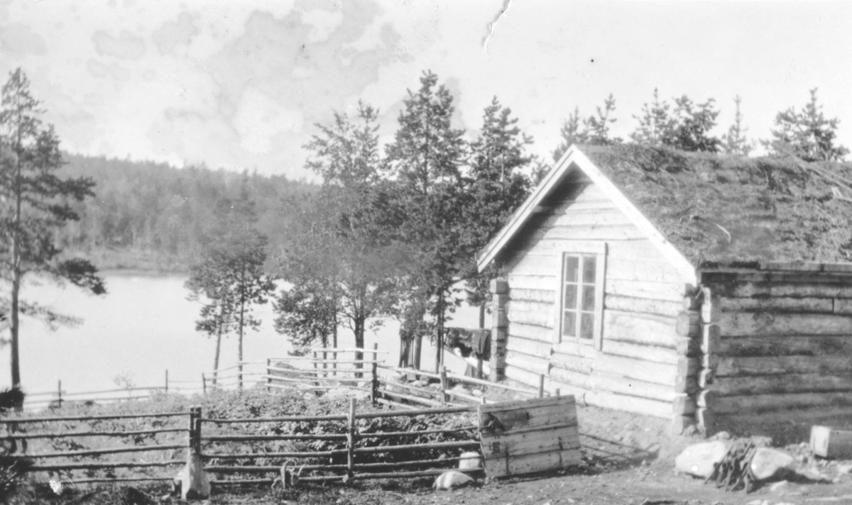 """Tekst bak bildet: """"Ved Russjaavre i Øvre-Pasvig. H.Kollijainens gaard."""" (Korrekt navn er Henrik Kalliainen gård)"""