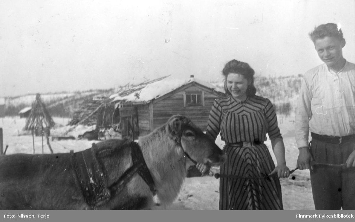 Grethe og Markus Sivertsen med en kjørerein utenfor Neiden fjellstue, påsken 1944