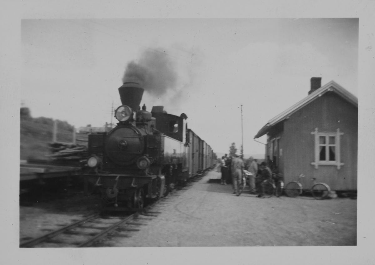 Tog til Skulerud kjører inn på Hornåseng stasjon. Toget trekkes av damplokomotiv nr. 7 Prydz.
