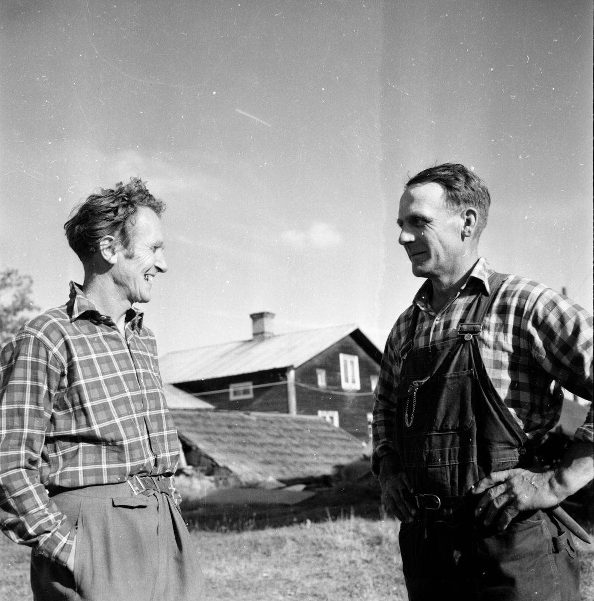 Lars Larsson. Tönsen Hanebo 1955