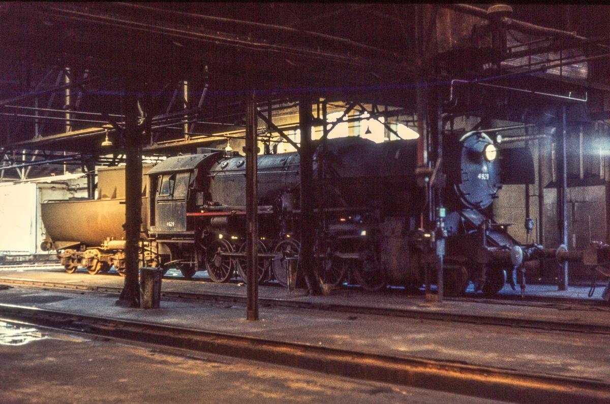 Damplokomotiv type 63a nr. 4929 i lokomotivstallen på Marienborg i Trondheim