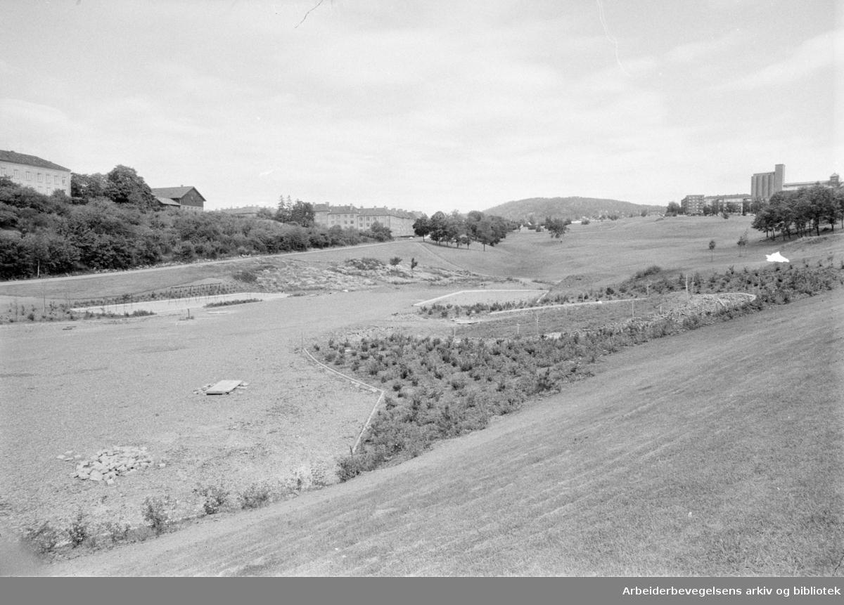 Torshovdalen park. Leikesenter skal stå ferdig i september. Juli 1971