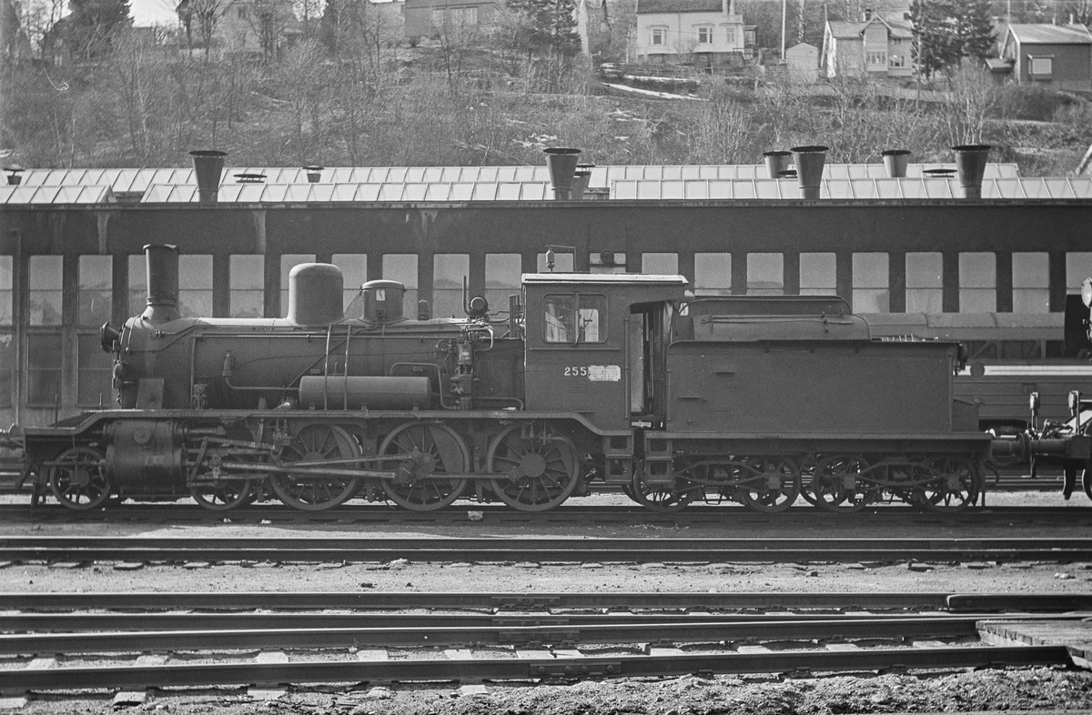 Damplokomotiv type 18c nr. 255 på Marienborg ved Trondheim.