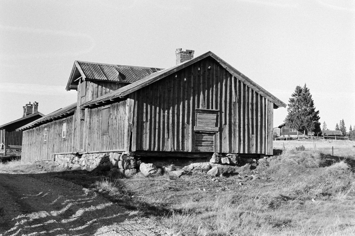 Nysetra setermeieri, Philske sameie, seterbruk på Hedmarken,