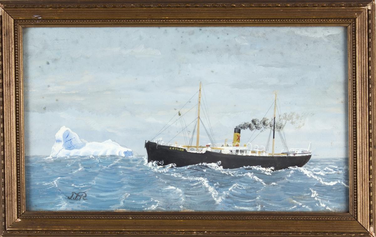 Skipsportrett av DS CEYLON under fart i åpen sjø. Har skorsteinsmerke til Harloff & Bøe.
