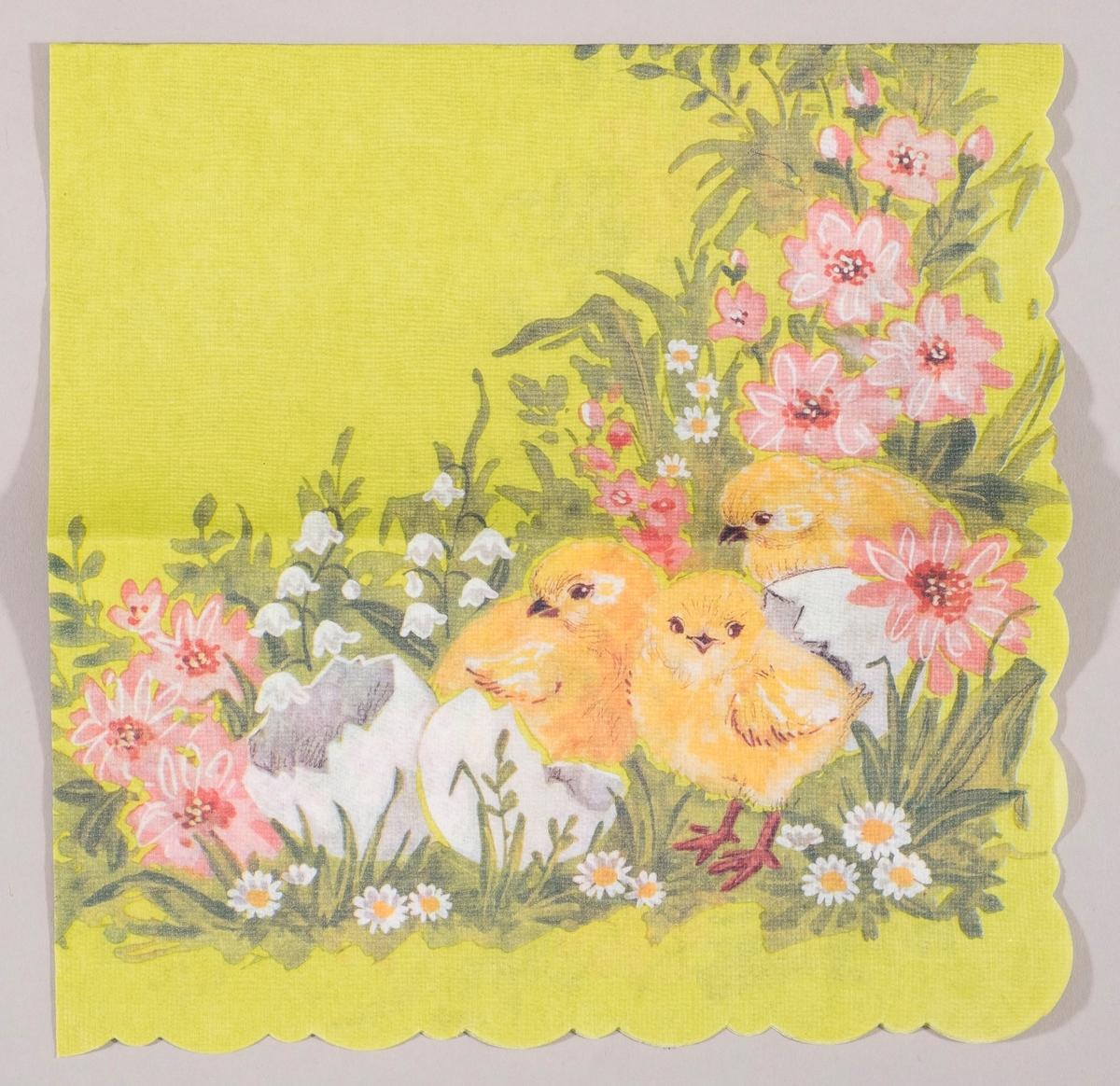Tre kyllinger står sammen med skallet til egg i en blomstereng med hvite og rosa blomster.