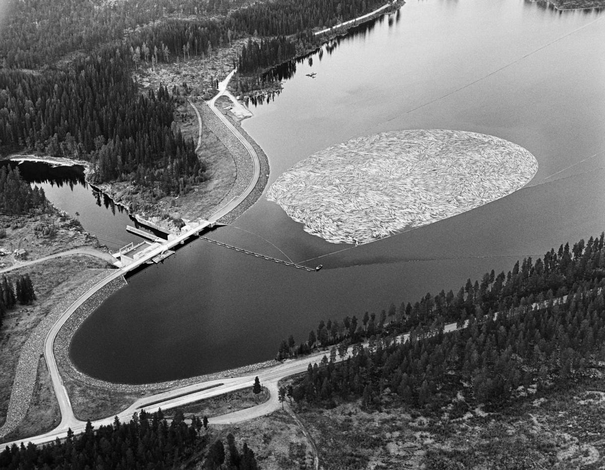 Flyfotografi av tømmerbom i den ytre (sørvestre) enden av Løpsjøen, en oppdemt del av elva Søndre Rena i Åmot kommune i Hedmark.  Fotografiet er tatt i mai 1984, den siste sesongen det var tømmerfløting i denne delen av Glommavassdraget.  Løstømmer fra områder høyere oppe i vassdraget var altså samlet i en ringbom av sammenkjedete tømmerstokker, som i sin tur er omgitt av ledelenser som skulle forebygge at tømmeret la seg mot land (strendene).  Vi skimter også ei lense som går vinkelrett ut fra damkonstruksjonen.  Den skulle bidra til at stokkene – når fløterne var klare for det – kunne slippes mot det såkalte «tømmerløpet» i dammen.  Dette er en kraftverksdam som utnytter vann fra Søndre Rena (inkludert vann som kommer i dette vassdraget fra Glomma via Rendalen kraftverk) og Søndre Osa.  Kraftverket er en fyllingsdam med flomløp og fisketrapp.  Fra åpningen i 1971 til fløtinga ble avviklet i 1984 hadde anlegget, som nevnt, også et tømmerløp.  Løpet kraftverk utnytter en fallhøyde på 19 meter.  Det er utstyrt med en kaplanturbin som yter 24 megawatt.  I forgrunnen, langs Løpsjøens strandlinje, ser vi Fylkesveg 216 mellom Rena i Åmot og Jordet i Trysil, her kalt «Haugedalsvegen».  Ei ikke korrekturlest avskrift av avtalen som ble inngått mellom kraftutbyggerne i Hamar, Vang og Furnes kommunale kraftselskap og Glomma fellesfløtingsforening om hvordan damanlegget skulle bygges og reguleres finnes under fanen «Opplysninger».