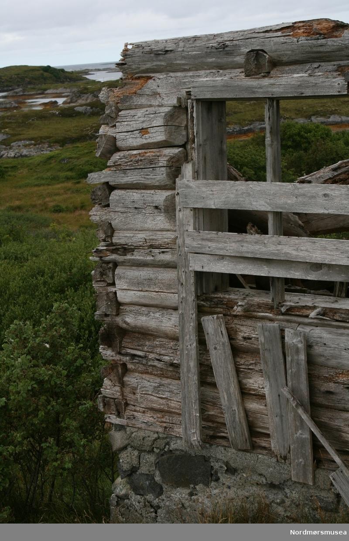 """Serie Kmb-2018-010.0001-0092: """"Arresten på Tingvoll som ble losjihus og seinere fjøs på Veiholmen.""""  Serie fotos som viser hovedsaklig ruinene av det gamle """"Nordmøre Arresthus"""". Lokalisert på et gårdsbruk på Nordre Skomsøy i Smøla kommune - nærmere bestemt på Gnr. 41 Bnr. 5. Dette bruket ble skilt ut fra Bnr. 1 i 1916, men skjøtet ble ikke tinglyst før 22. september 1924. Det var Andreas Olsen Skomsøy som fikk skjøte fra sin far, Ole Bersvendsen Skomsøy. I 1926 bygde Andreas hus på Bnr. 5, og det fikk også navnet """"Nordre Skomsøy"""".   Andreas Olsen Skomsøy kjøpte losjihuset """"Arresten"""" på Innerklakken på Veiholmen og flyttet dette til Nordre Skomsøy. """"Arresten"""" bestod delvis av tømmerkroppen av det tidligere arresthuset for Nordmøre Fogderi på Tingvoll, som ble lagt ned og solgt på auksjon etter at det nye distriktsfengselet i Kristiansund ble tatt i bruk 1. april 1865. Det gamle arresthuset i tømmer ble revet og flyttet til Veiholmen. Væreier Ole Daniel Rognskog bygde i 1870-årene fem store og ett mindre losjihus på Veiholmen for tilreisende fiskere under skreifisket. """"Arresten"""" var ett av disse.  Det tidligere losjihuset ble satt opp som fjøs på Nordre Skomsøy i 1925-27. Tømmerkroppen av det gamle arresthuset utgjorde en del av fjøset, og ble forlenget med et tilbygg i reisverk på 5,3 m lengde. I 1927-35 ble fjøset panelt utvendig og påbygd en toppetasje som låve.   Bygninga står nå (2018) til nedfalls. Tømmerkroppen av det gamle arresthuset er likevel godt synlig. Det ser ut til å ha vært en solid bygning – vi kan tydelig se at tømmerstokkene har vært låst sammen på en spesiell måte. Vinduene til arrestrommene var nok i sin tid helt annerledes enn de vindusåpningene vi ser i dag – sannsynligvis glugger/lysåpninger høyt på veggen med noen ti-talls cm høyde og bredde. Endeveggen vi ser på bildene vendte mest sannsynlig sydover mot Tingvollvågen da arresthuset lå på Bekken. Motsatt endevegg med inngangen til arresthuset vendte mest sannsynlig mot nord.  Andre bygninger"""