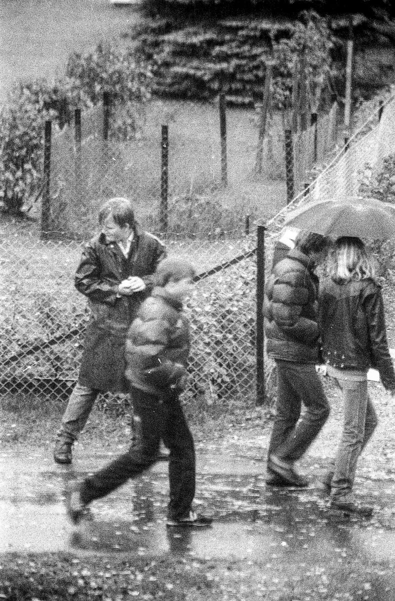 Høstregn, tåke med paraplyer, vannpytter, vissent løv på frontruta.