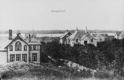 Parti fra Lillesund sett mot vest, ca. 1905.