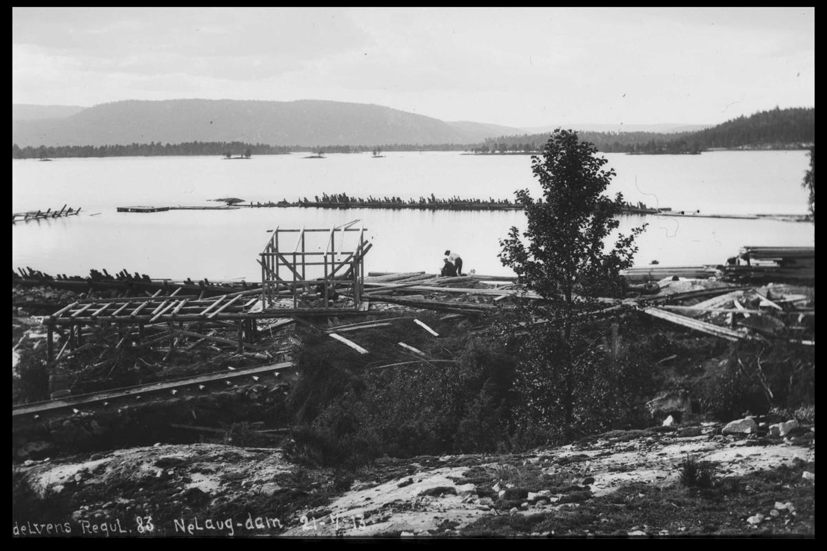Arendal Fossekompani i begynnelsen av 1900-tallet CD merket 0474, Bilde: 71 Sted: Nelaug Beskrivelse: Damanlegget