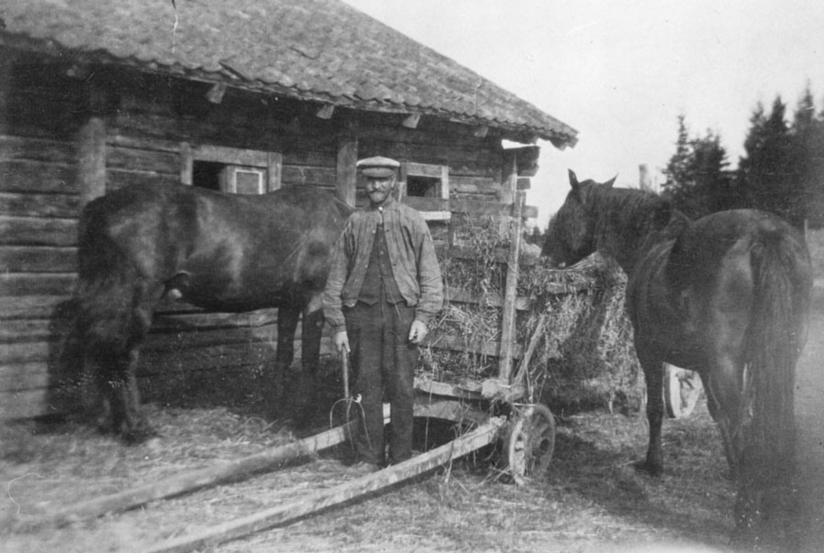 Nils Nordby med hestene.