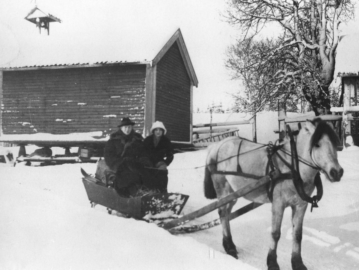 Handletur på vinterføre med hest og slede.